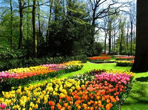 imagenes de jardines impresionantes para 237 sos en la tierra jardines m 225 s bellos del mundo plantas