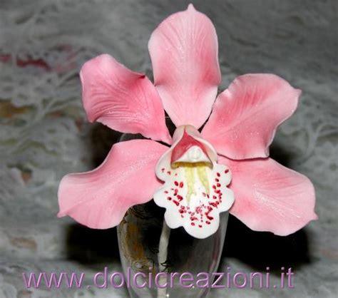 fiori in pdz passo passo dolci creazioni by carla orchidee in pasta di zucchero