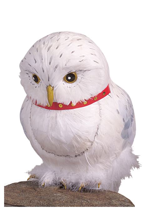 owl accessories hedwig owl accessory harry potter hedwig owl accessories