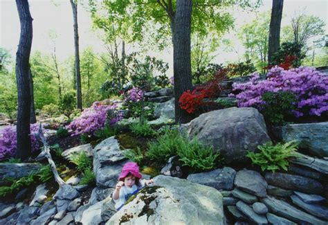 Image Of Rock Garden Rock Gardens And Retaining Walls Hickory Hollow Landscapers