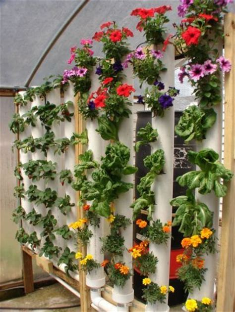 Pvc Vertical Garden Beautiful Exle Of A Space Efficient Hydroponic Garden