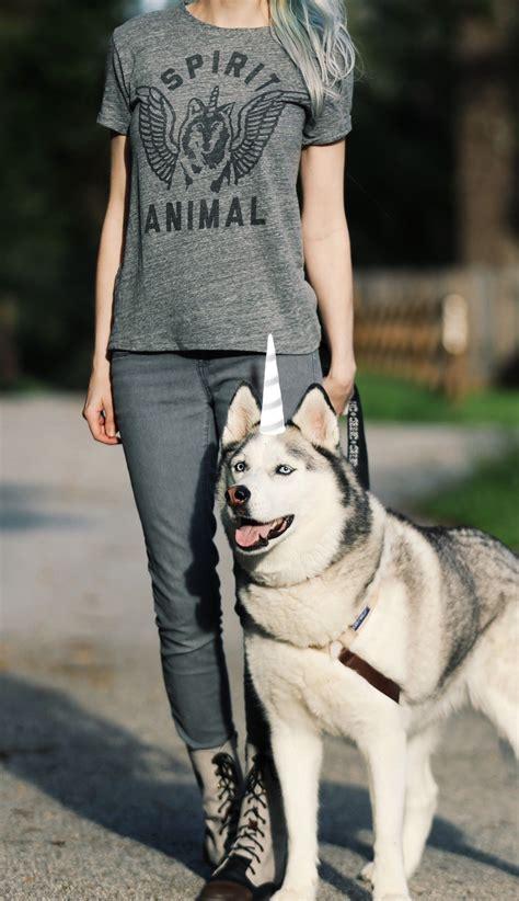Tees Spirit Animal spirit animal dogs brunch animal and