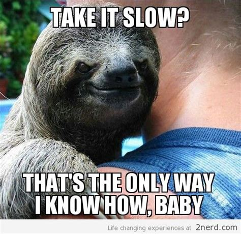 Perverted Sloth Meme - funny nerd meme share this on facebook picture
