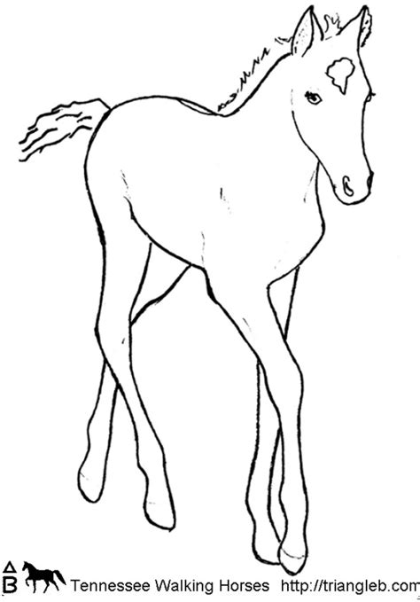 Coloring Pages Of Tennessee Walking Horses | triangle b coloring tennessee walking horses
