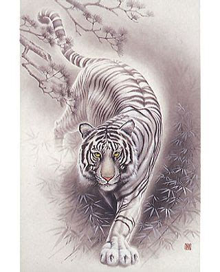 white tiger tattoos 25 best ideas about white tiger on