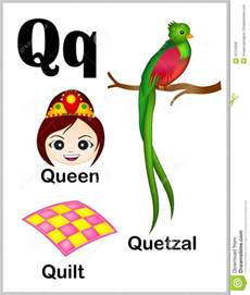 alphabet letter q pictures stock vector image of
