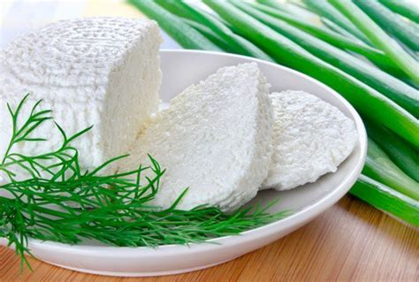 Cottage Cheese Source Of Protein by List Of Low Calorie Foods With High Protein Content