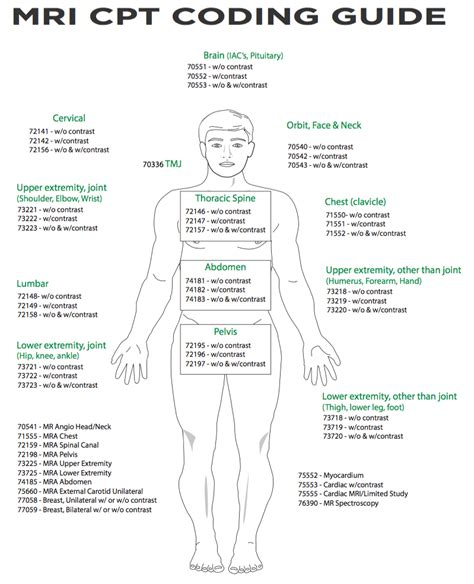 cpt procedure codes ldes anesthesia software