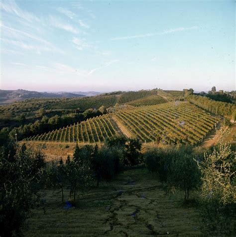 chianti poggibonsi fattoria di montemorli chianti docg 2012 in vendita vino