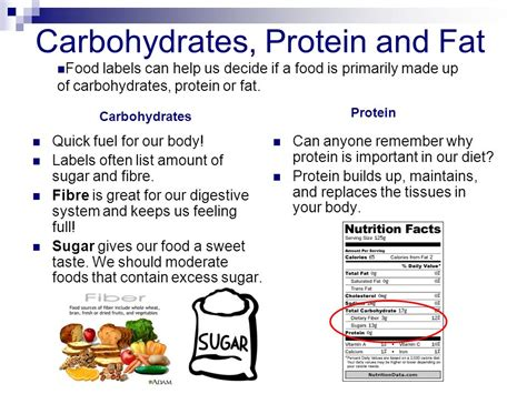 carbohydrates or protein fit for lifestyles lesson plan 8 grades 5 6 ppt