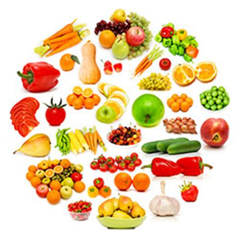 alimentazione tesina benefici della dieta vegetariana tesina tesine esame