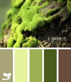 1000 ideas about green brown bedrooms on brown bedrooms brown paint walls and