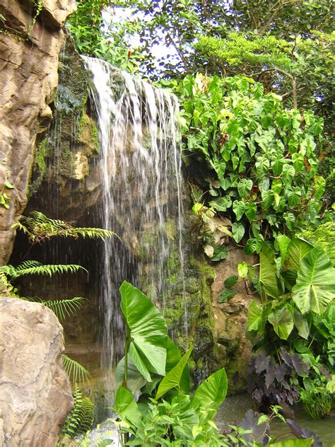 The Botanic Gardens Singapore File Singapore Botanic Gardens Waterfall Jpg Wikimedia Commons