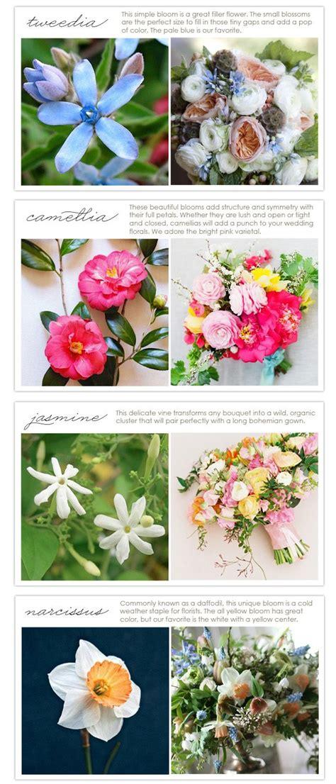 types of flower arrangements 160 best flower types images on pinterest flower