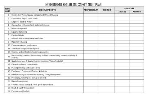 environmental health and safety plan template environment health and safety audit plan
