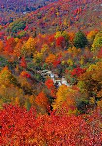 carolina fall colors pin by chris dell harding on places i of