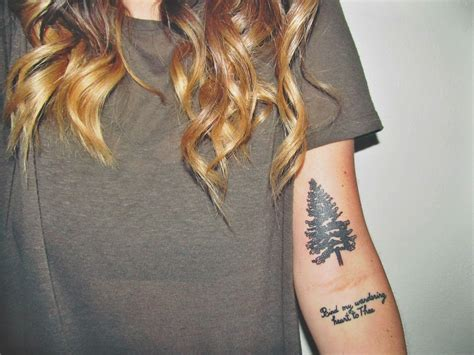 pine tree tattoo 22 photos of mystical pine tree tattoos sortra