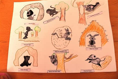 their home project chart on animals and their homes smart indian