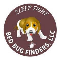 bed bug finder goodnight bed bugs funny cartoon bed bugs pinterest funny cartoon and beds