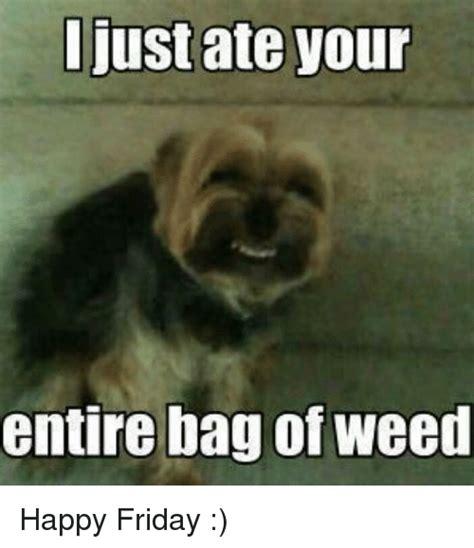 Happy Friday Meme - happy friday meme www pixshark com images galleries