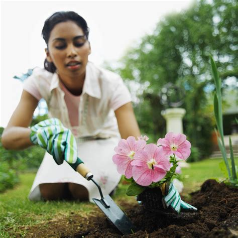 Planting A Flower Garden by For Great Advice On Planting Flowers Try These Great Tips