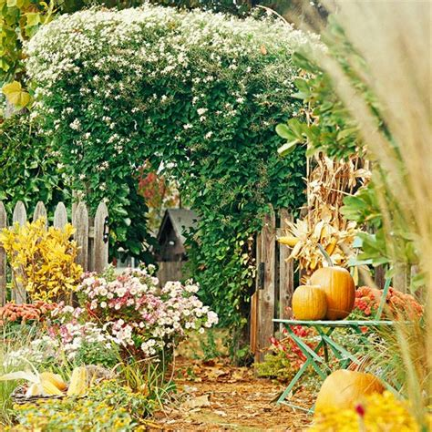 fall garden in 18 beautiful flowers that will survive the fall taskeasy