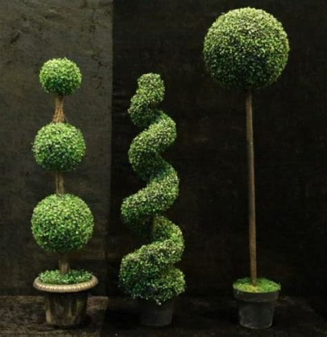 topiary plants for sale secondhand shop equipment theming and decor brand new