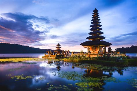 Pemutih Tje Di Indo arcadis indonesia
