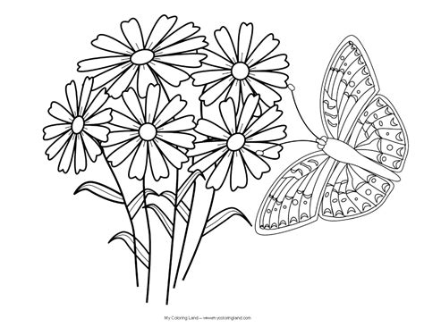 Butterflies And Flowers Coloring Pages butterfly my coloring land