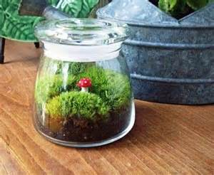 Gifts Home Decor 20 Ideas For Home Decorating With Glass Plant Terrariums