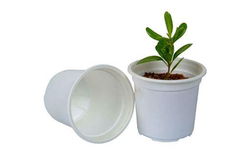 Biodegradable Planters by Biodegradable Disposable Eco Friendly Plastic Planter Buy Plastic Planter Plastic Planter