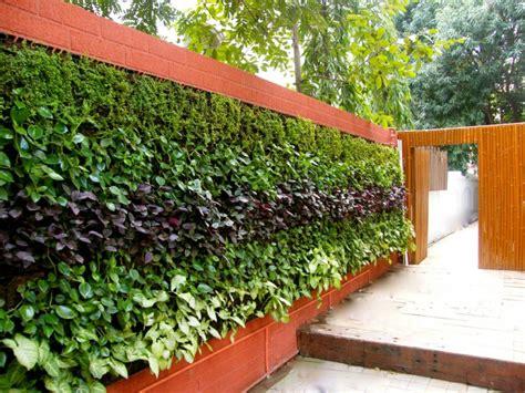 como hacer un jardin vertical de interior c 243 mo hacer un jard 237 n vertical ideas para exteriores e