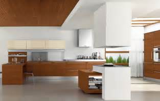 Contemporary Style Kitchen Cabinets by Modern Kitchen Ideas D Amp S Furniture