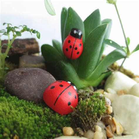 buy micro landscape wooden ladybug home garden