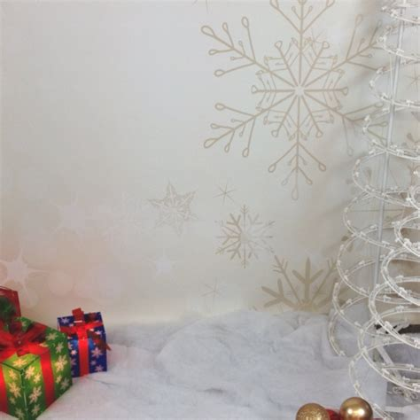 the gallery for gt christmas photography backdrops