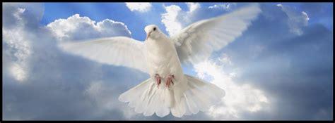imagenes de luto con palomas mision camento 42 manteniendo la unidad del espiritu