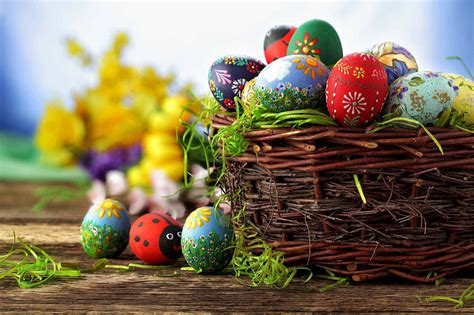 Easter Egg pictures of easter egg hunts www pixshark images galleries with a bite