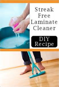 cleanliness is next to godliness on pinterest 76 pins