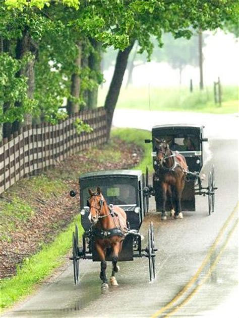 amish culture beliefs and lifestyle about travel exploring ohio s edge of appalachia midwest living