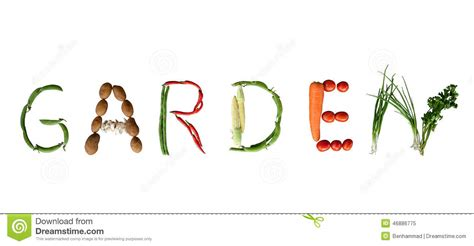 l word vegetables vegetable writing garden stock image image of diet