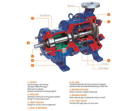 pump section centrifugal pump cross section bing images