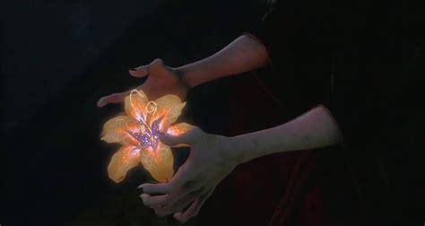 raperonzolo fiore rapunzel l intreccio della torre da colorare disegni da