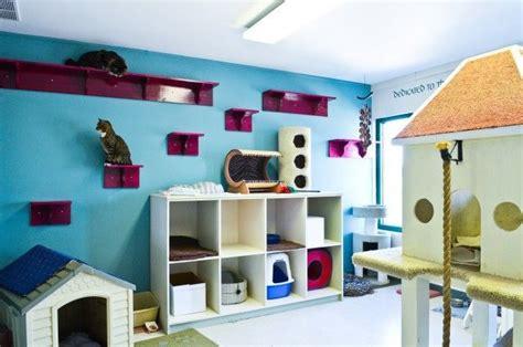 cat room love  kitty litter bins   dog house