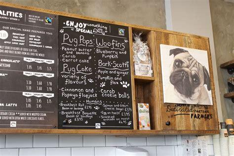 special pug guildford s pop up pug cafe in pictures get surrey