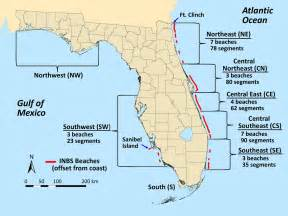 turtle florida map satellites show florida beaches becoming darker and that