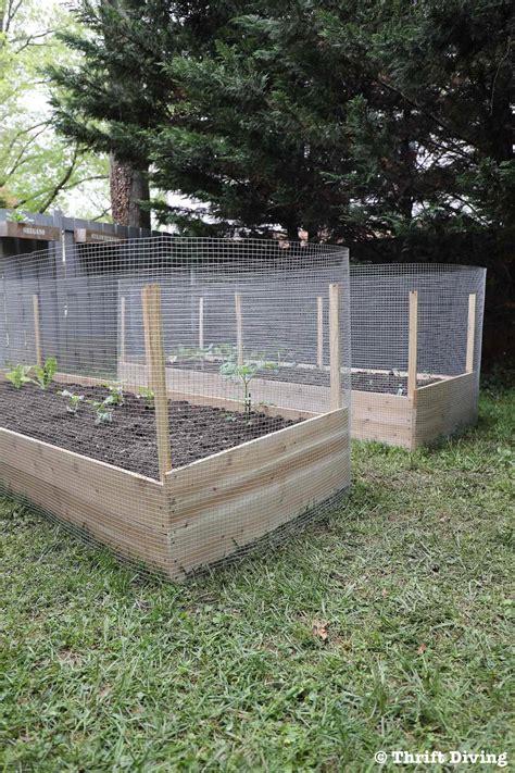 build  diy raised garden bed  protect