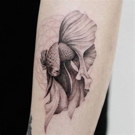 beta fish tattoo best 25 betta ideas on betta fish