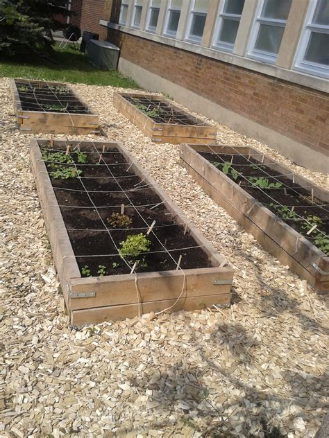 organic vegetable gardens organic vegetable gardens our canada project