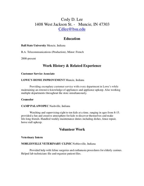Sle Rn Resume 1 Year Experience by Lowes Resume Resume Ideas