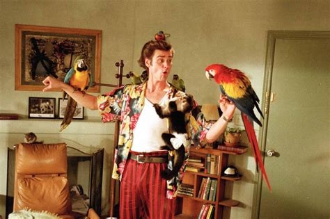ace ventura pet detective bathroom scene ten outrageously transphobic moments in films and tv
